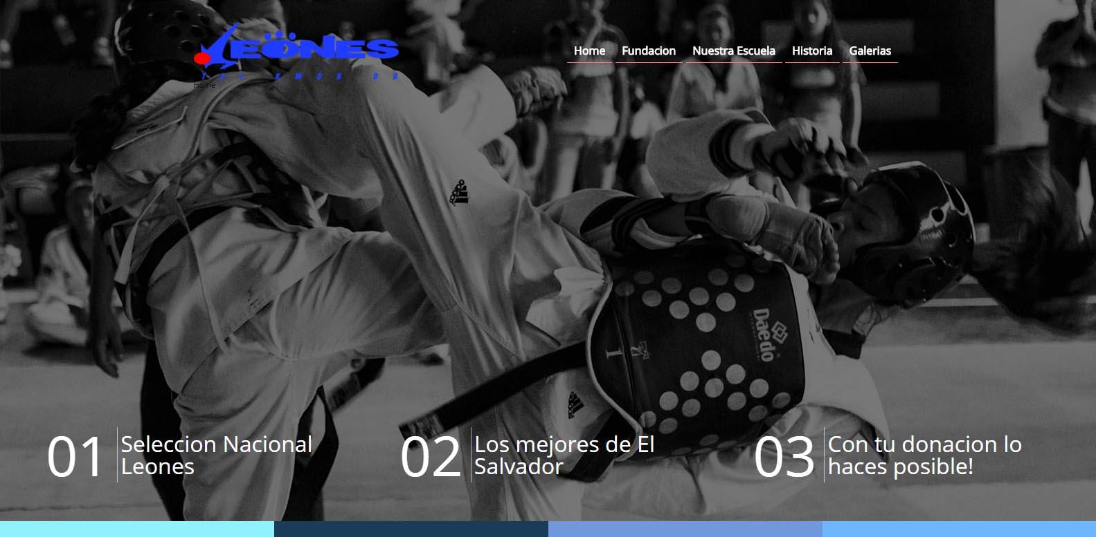 Social media – Marketing Digital El Salvador  Fundacion Leones, la primera fundacion en utilizar crowdfunding para la recolección colectiva de fondos en El pais.