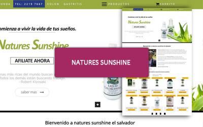 Diseño web para Distribuidor Natures Sunshine